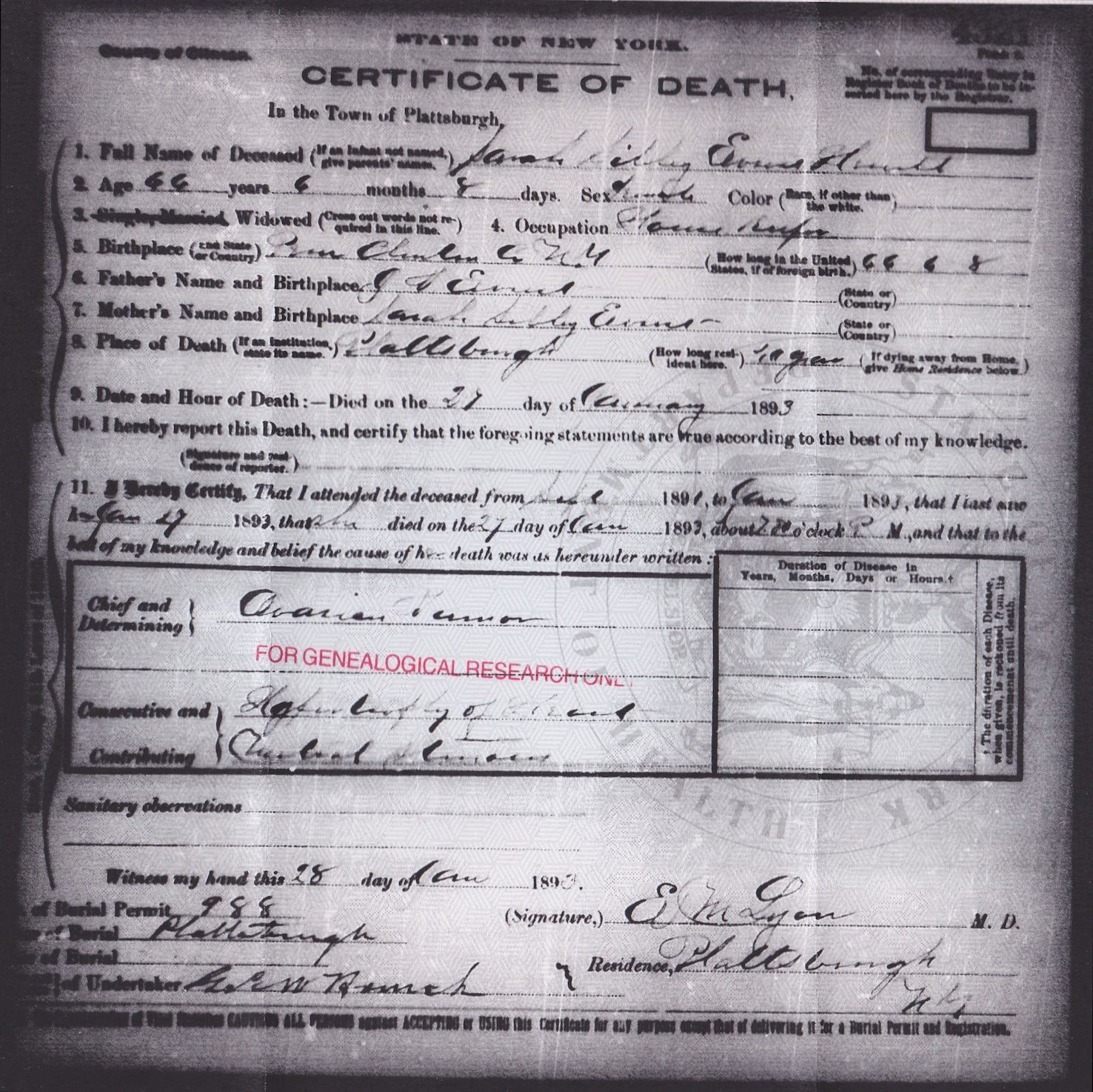 birth record plattsburg clinton co ny